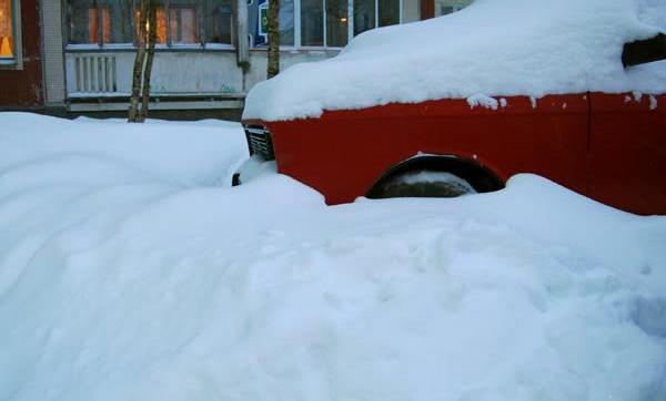Я пережил зиму 2009-2010