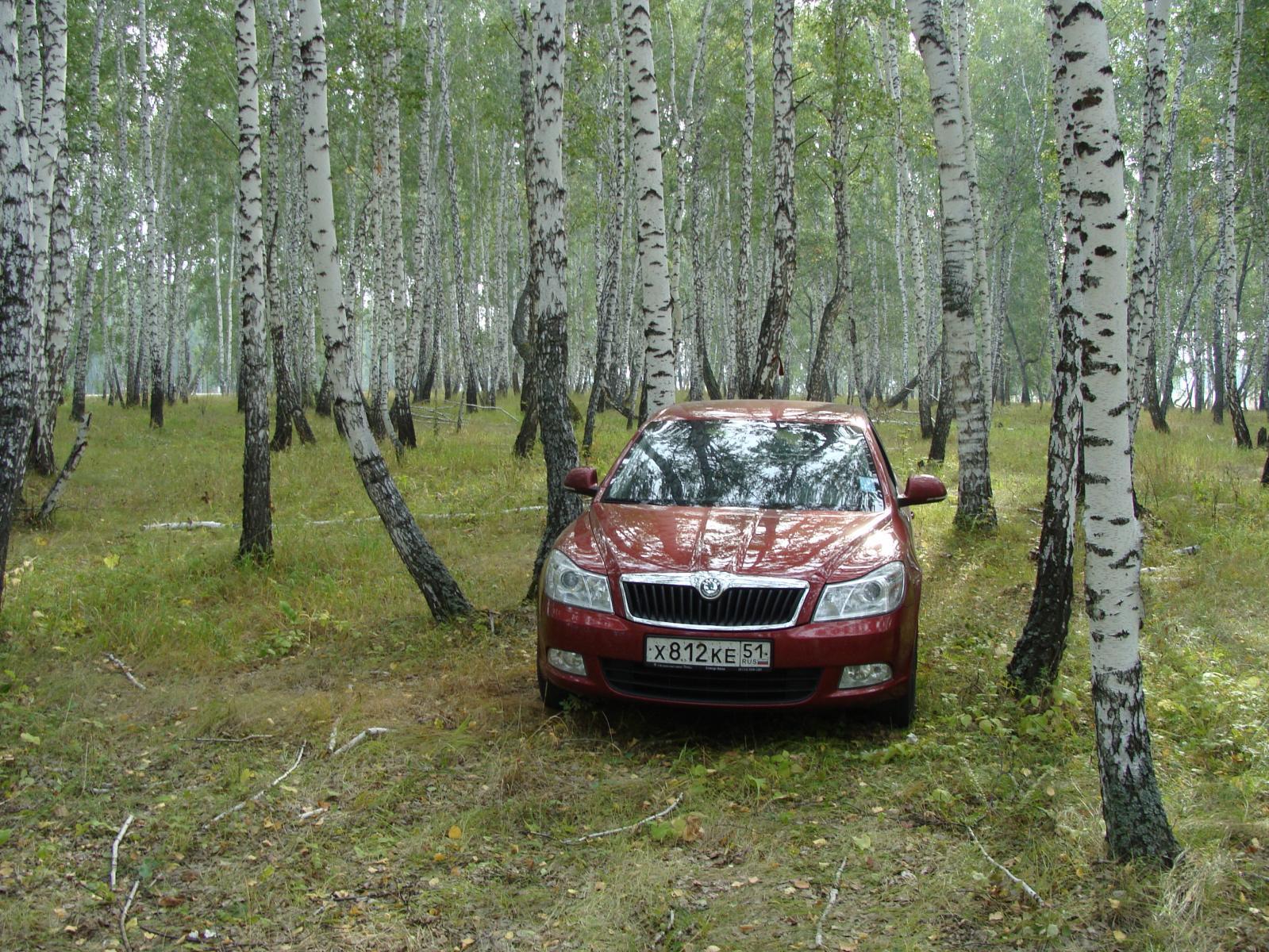 По Омском, сентябрь 2010