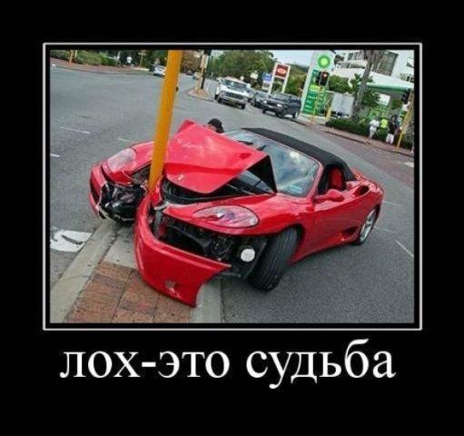 x_33a957dd.jpg