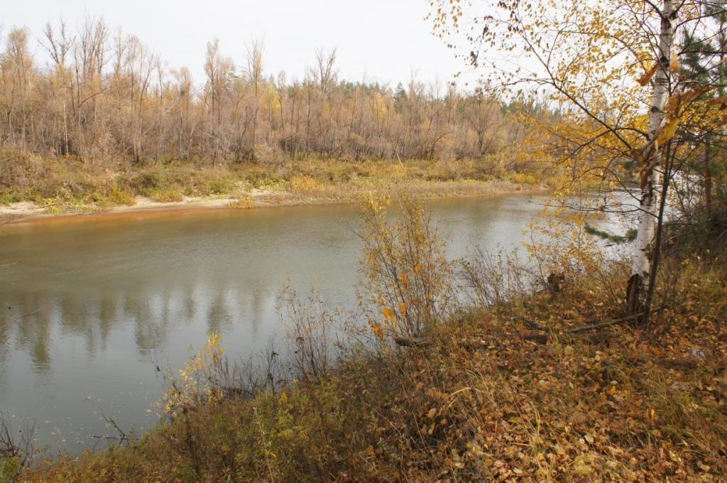 Река Черемшан
