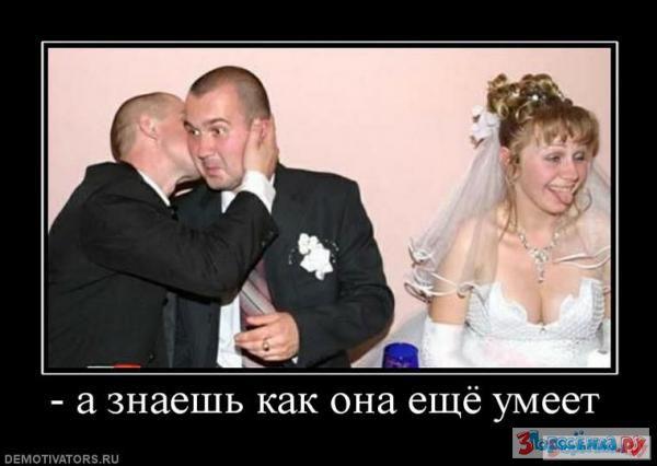 3porosenka 9102779 23662848