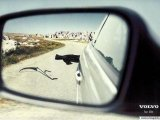 Фотография Babaй
